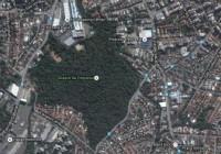Carta da AMAF ao Prefeito cobra preservação do Bosque da Freguesia