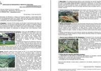 Documento entregue ao Prefeito em 12/07/2013 – 8 pontos
