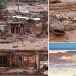 A AMAF age localmente (Freguesia – Rio – RJ), mas pensa globalmente (Bento Rodrigues – Mariana – MG)