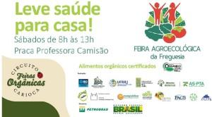 Feira_agroecológica_inst