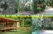 Bosque da Freguesia – Programação do mês de junho.