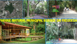 Quer saber algo sobre a nova gestão do nosso Bosque?