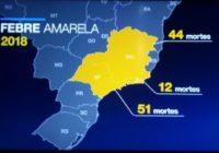 Como fica a Samarco e a febre Amarela